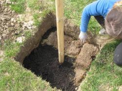 mise en place de la première couche de terre (herbe)